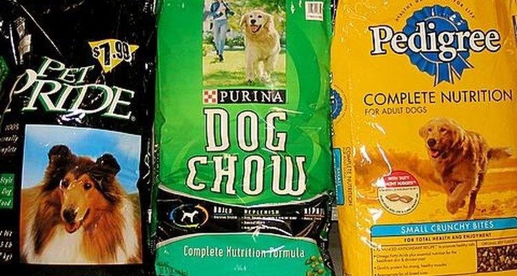 Mezclar la vieja marca de alimento con la nueva puede ser la solución para un perro que no quiere comer.