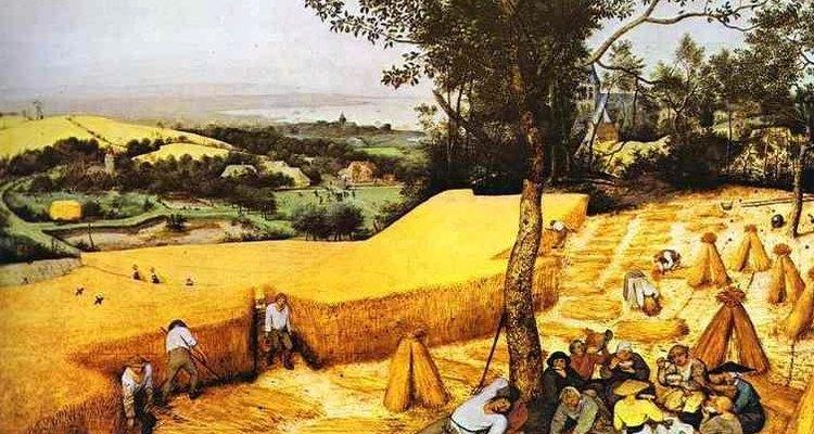 La agricultura comenzó hace unos 10.000 años.