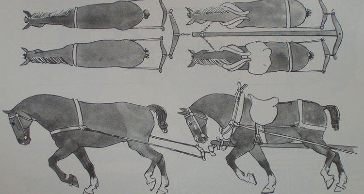 En el siglo X se inició una era de ganadería centrada en el caballo.