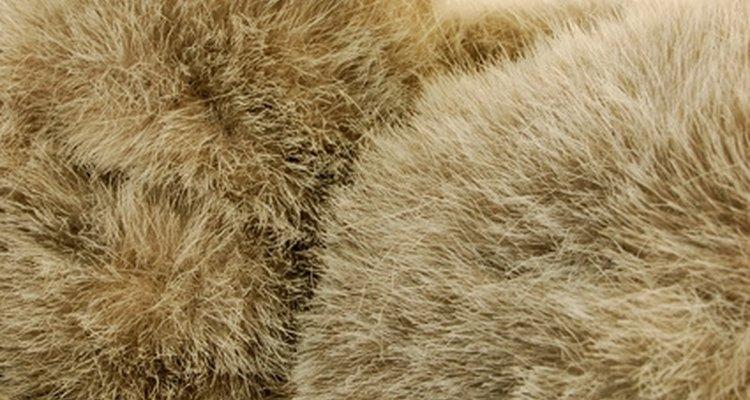 Clean rabbit fur at home.