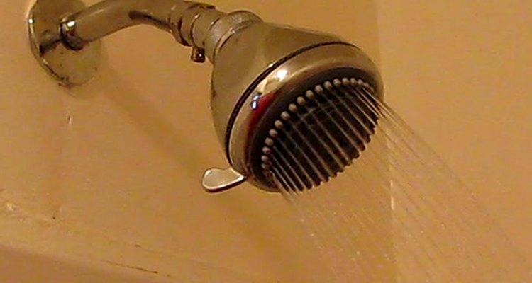As larvas da mosca-de-banheiro geralmente são encontradas em áreas ao redor do chuveiro