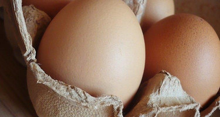 As caixas de ovos são feitas de materiais diferentes