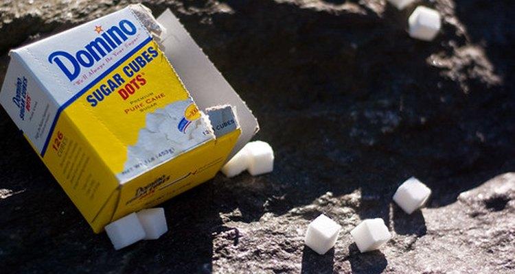 O açúcar pode salvar a vida de um filhote de cachorro