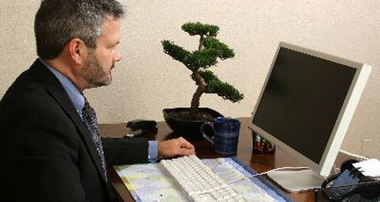 Otro modo en el que la personalidad afecta las actitudes frente al trabajo es determinando el nivel de profesionalismo.