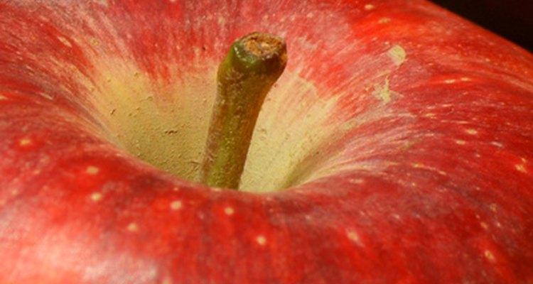 La manzana es fuente de carbohidratos.