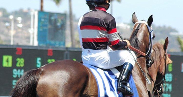 Las apuestas en las carreras de caballos se determinan por la cantidad de dinero apostada en un caballo en particular.