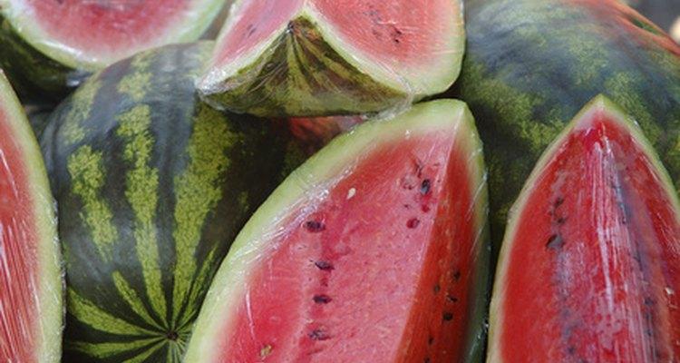 Sementes de melancia são de fácil manuseio