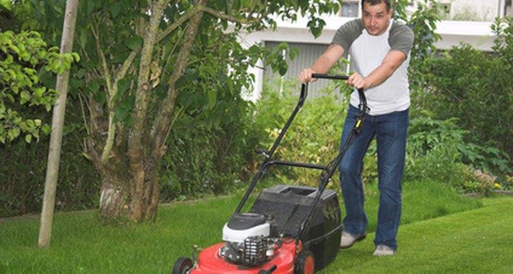 O preço do seu serviço de jardinagem é um fator importante de seu sucesso.