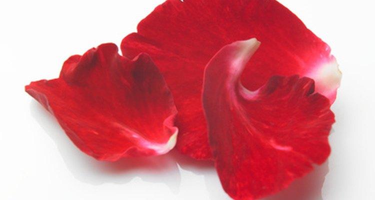 Originalmente, los pétalos de flores eran utilizados para repeler espíritus malignos.