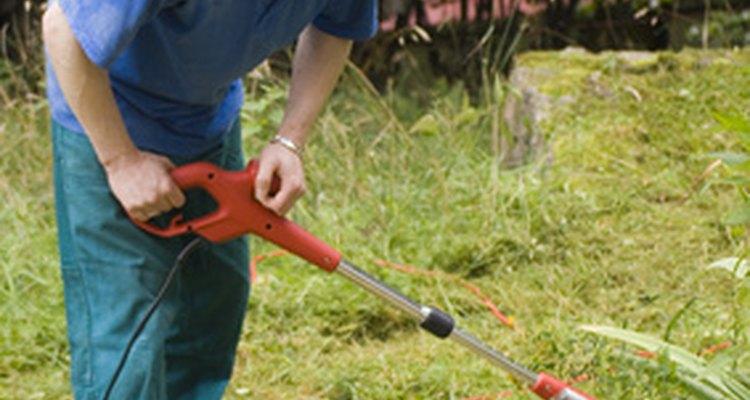 Pergunte a pessoas locais se elas precisam de algum trabalho no quintal que você possa fazer