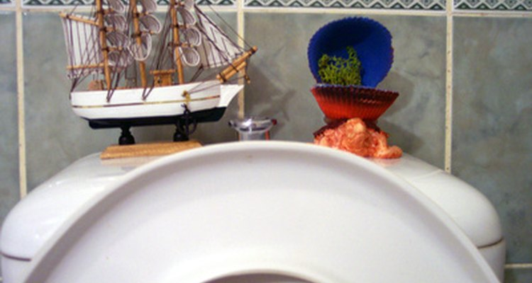 Si no usas el baño con regularidad, el nivel del agua podría caer sólo por evaporación.