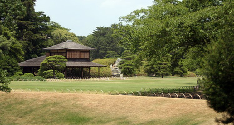 Empty space is an important part of a Japanese garden.
