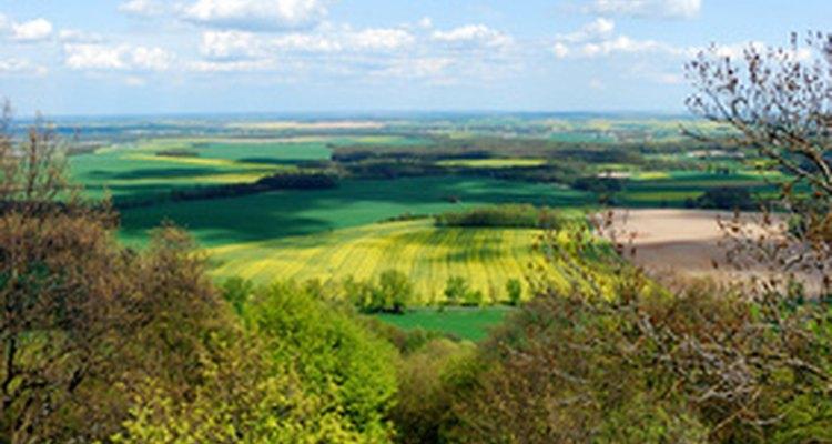 Los ecólogos del paisaje estudian las interacciones de las especies en un paisaje diverso.