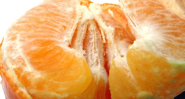Recoge las semillas de una fruta de mandarina madura.