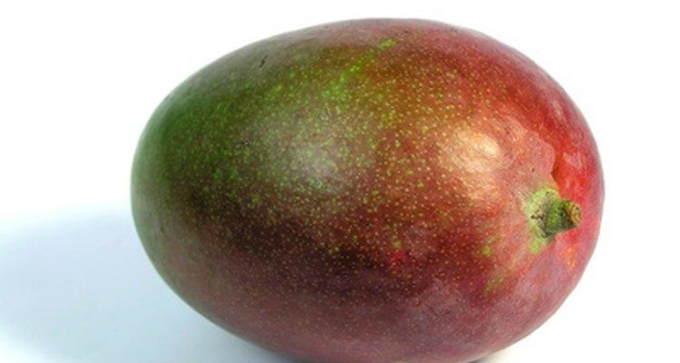 Los mangos pueden presentar cualquier combinación de los colores verde, amarillo, naranja y rojo.