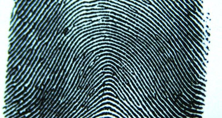 Las huellas son requeridas para aquellos que requieren registros criminales.