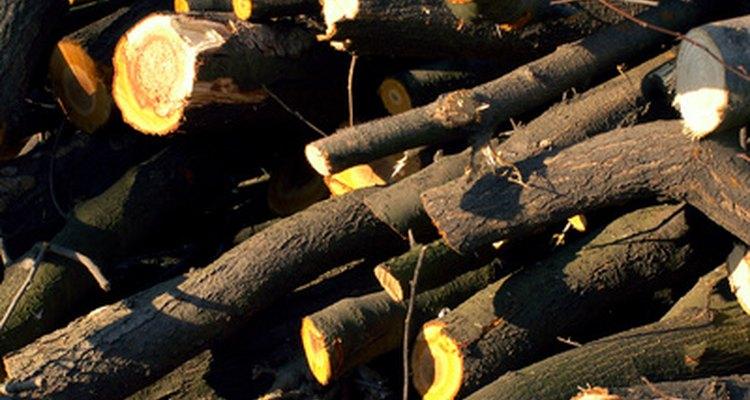 La deforestación puede tener un impacto significativo en la salud de un medio ambiente.