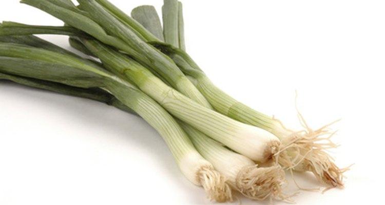 Cuando compres cebollino, busca hojas de colores parejos y un olor agradable.