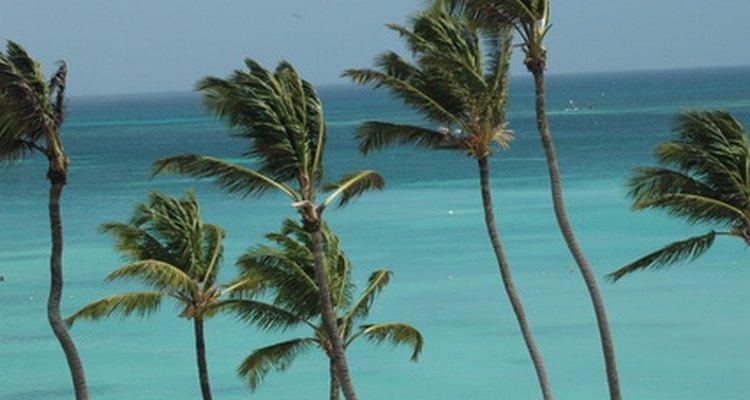 Aruba es parte del Reino de los Países Bajos.