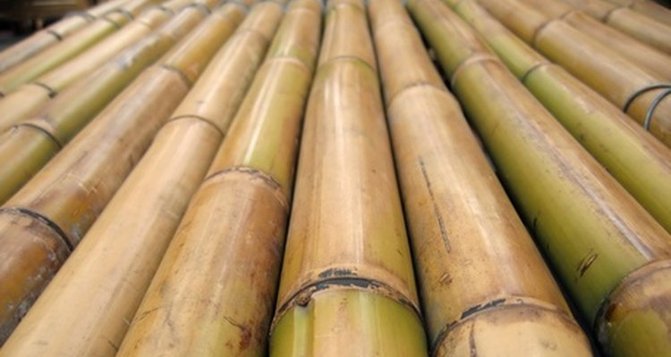 Bend bamboo sticks for use in building projects.