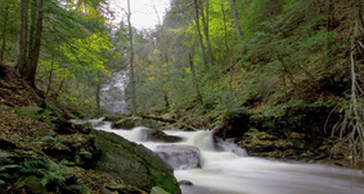 The hydraulic radius of a stream is a measure of its water flow rate.