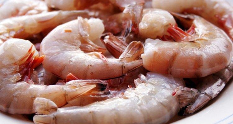 O camarão fresco é altamente perecível