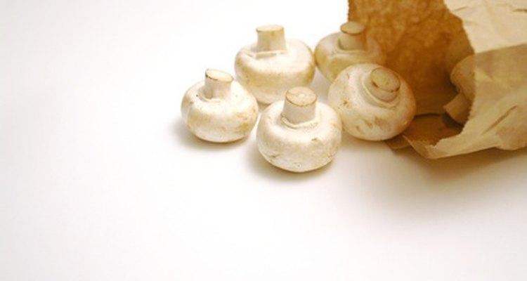 Las setas frescas deben tener un color claro y una textura firme pero seca.