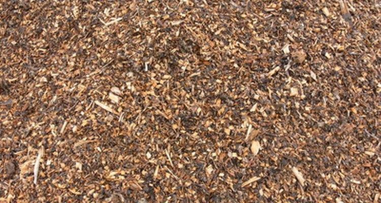 A cobertura de madeira evita o surgimento de ervas daninhas e decompõe-se para enriquecer o solo