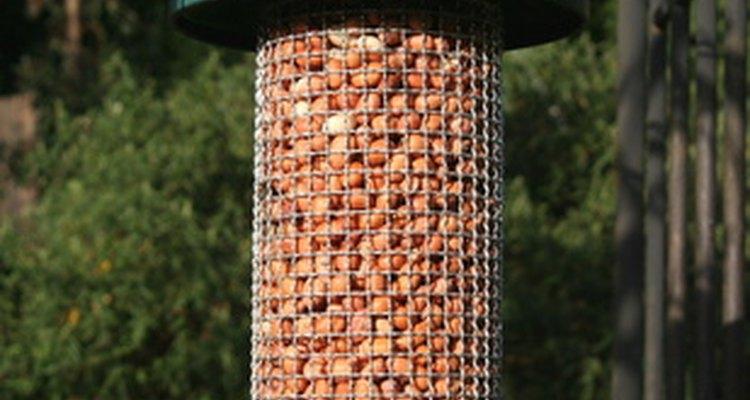 Putting a bird-feeder in your garden will attract birds.