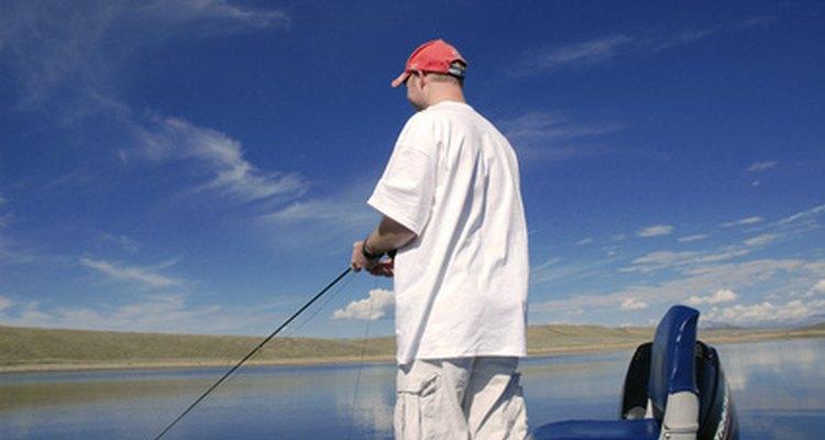 Aunque algunos pescadores de caña las consideran de poco valor, las amia calvas son peces que generan peleas duras.