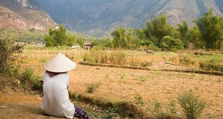 Los paisajes increíbles de Vietnam, atraen a muchos turistas.