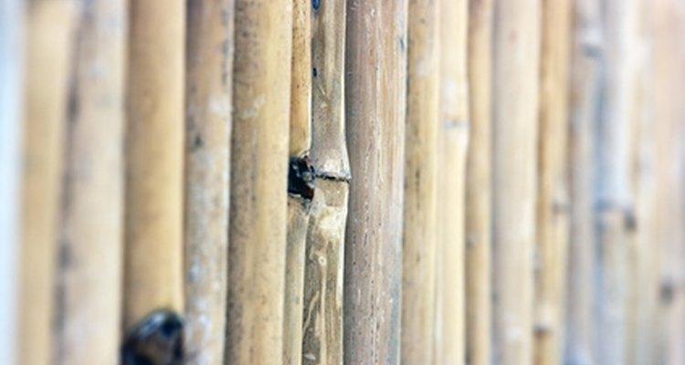 As cercas de bambu criam uma atmosfera serena