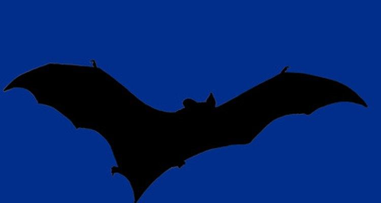 Los colores azules y negro imitan el tema de Batman.