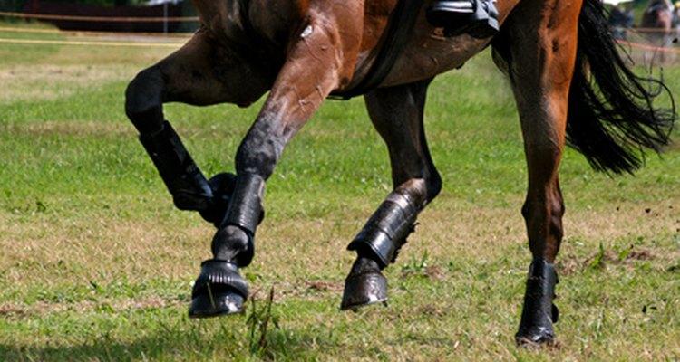 A unidade cavalo-vapor é baseada na força que um único cavalo produz