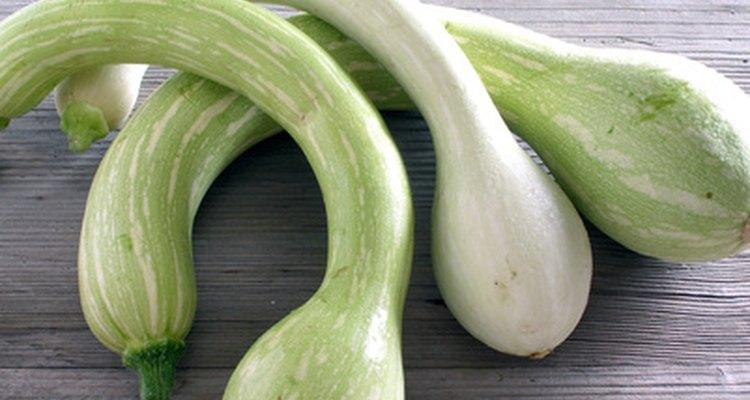 Trata los calabacines y otras calabazas de verano con remedios caseros para el mildiu.