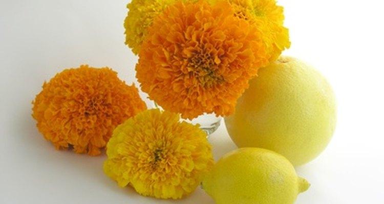 El limón ayudará a prolongar la vida de la flor cortada.