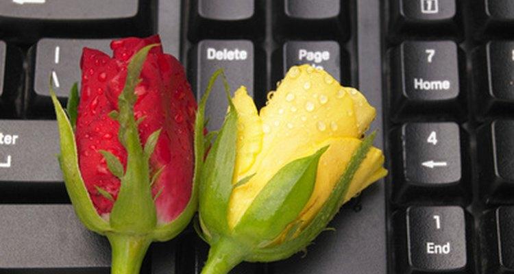 Esto ayuda a preparar a las rosas para su exhibición, evitando que se marchiten y manteniendo abierta la floración.