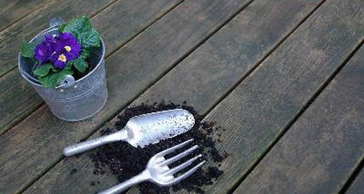 lanta las semillas en zanjas de poca profundidad, cubriéndolas con al menos media pulgada (1,27 cm) de tierra.