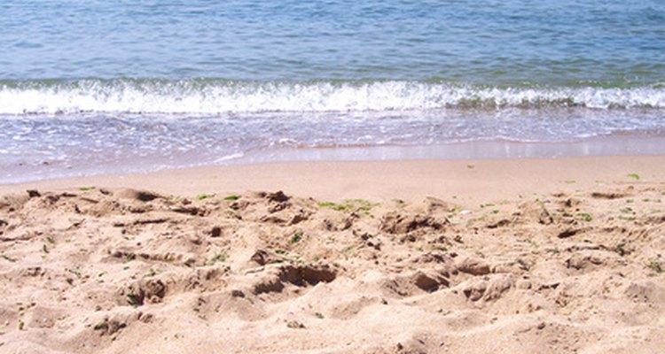 Hay varias playas que están a poca distancia en auto de Raleigh, Carolina del Norte.
