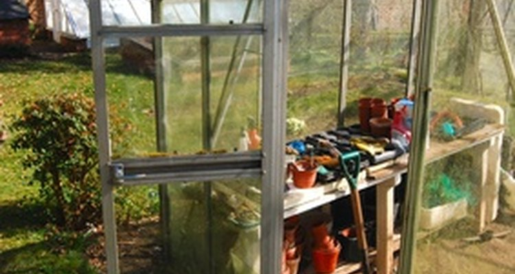 This is a small walk-in greenhouse.