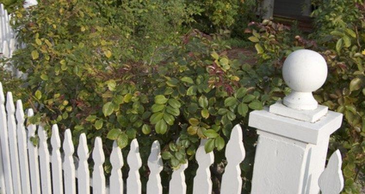 Pintura à bade se cal aplicada em uma cerca