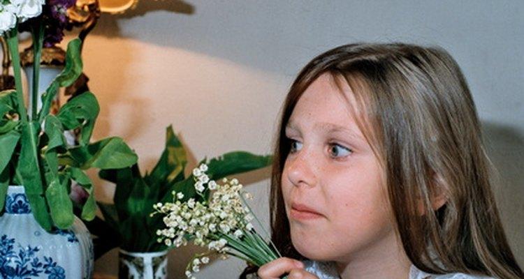 Los psicólogos infantiles ayudan a los niños a desarrollar una salud mental.