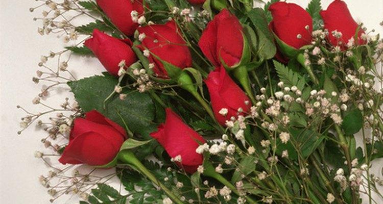 Una docena de rosas es un obsequio sorpresa clásico para un aniversario.