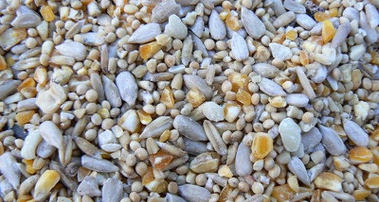 La industria de semillas constituye una parte significativa de las ventas agrícolas anuales en Estados Unidos.