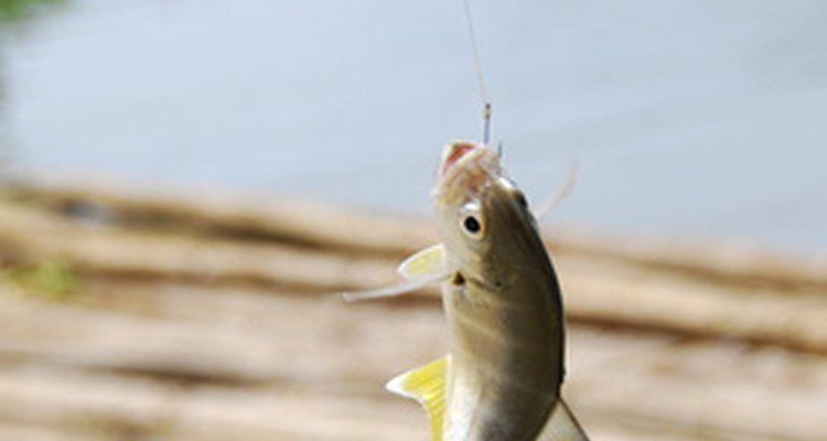 Making quill and other types of fishing floats is a tradition among many anglers.