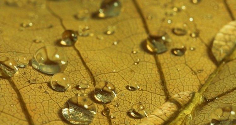 O óleo mineral é ideal para um acabamento não tóxico em uma tábua de madeira