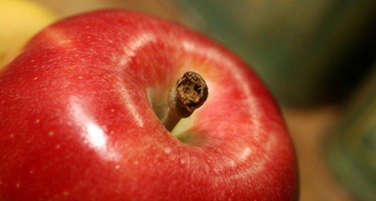Los árboles de manzana necesitan un clima templado y seco para prosperar.