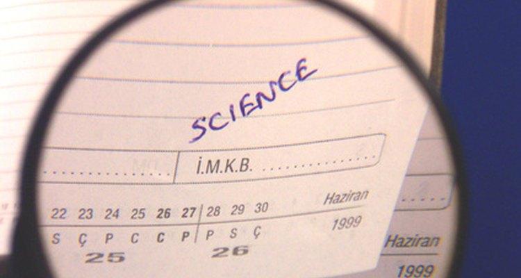 Escolha a semente certa para seu projeto de ciências