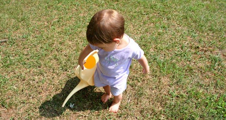 Incluso regar las plantas puede ser divertido para un pequeño individuo.