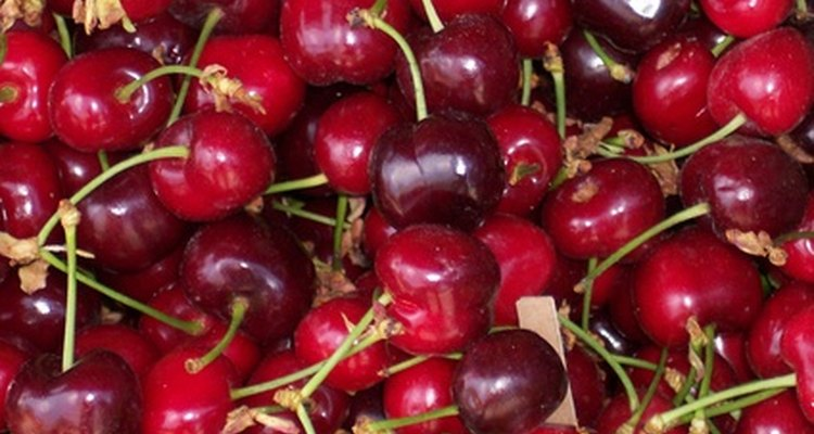Cherries are an excellent low-purine food source.